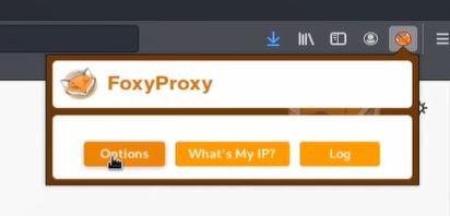 burp suite foxyproxy